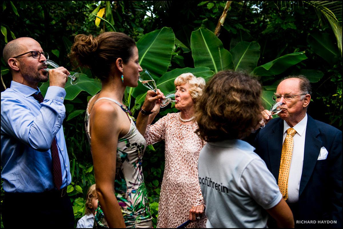Hochzeitsgäste trinken Champagner in der Masoala-Halle